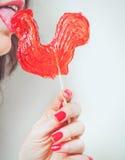 Muchacha hermosa que lame el gallo del caramelo en el fondo blanco Imagen de archivo libre de regalías