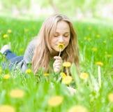 Muchacha hermosa que miente en la hierba y el diente de león que huele Fotos de archivo libres de regalías