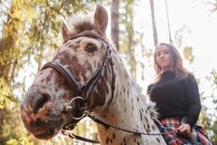 Muchacha hermosa que monta un caballo en campo Imagenes de archivo