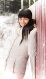 Muchacha hermosa que presenta en invierno Fotos de archivo
