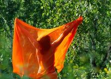 Muchacha hermosa que se coloca detrás con el mantón anaranjado imagen de archivo