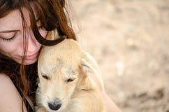 Muchacha hermosa que sostiene un pequeño perro perdido en su AR Fotos de archivo