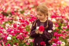 Muchacha israel? que escoge las flores florecientes de los ran?nculos del jard?n en el jard?n magn?fico fotos de archivo libres de regalías