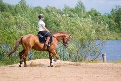 Muchacha - jinete en caballo de montar a caballo Imágenes de archivo libres de regalías