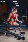 Muchacha joven atractiva del atletismo con el ajustado perfecto con pesas de gimnasia en gimnasio fotografía de archivo