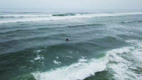 Muchacha joven de la persona que practica surf que busca para las ondas
