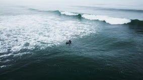 Muchacha joven de la persona que practica surf que busca para las ondas metrajes