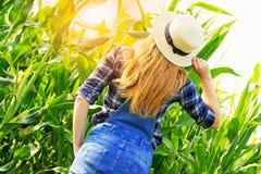 Muchacha joven del granjero en campo de maíz Fotografía de archivo libre de regalías
