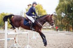 Muchacha joven del jinete del caballo en la competencia ecuestre Foto de archivo