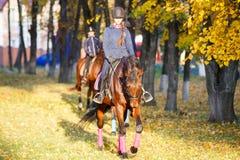 Muchacha joven del jinete en caballo de bahía en el parque Foto de archivo libre de regalías