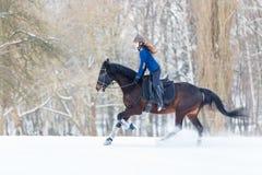Muchacha joven del jinete en el caballo de bahía que galopa en invierno Imagenes de archivo