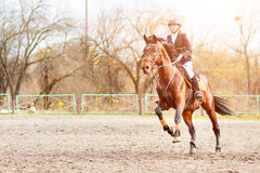 Muchacha joven del jinete en el caballo que trota en el salto de la demostración Imagenes de archivo