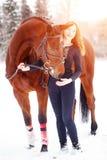 Muchacha joven del jinete que se coloca con el caballo en rayos de sol Foto de archivo libre de regalías