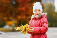 Muchacha linda alegre cinco años en otoño imágenes de archivo libres de regalías