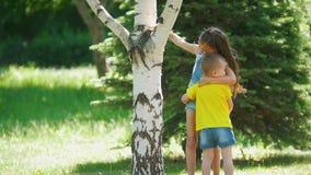 Muchacha linda con el pequeño hermano que se divierte que corre alrededor del árbol al aire libre en el día soleado almacen de metraje de vídeo