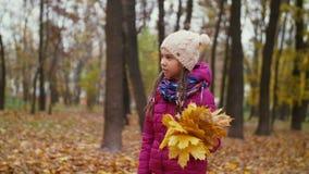 Muchacha linda con las hojas caidas que da un paseo en parque del otoño almacen de metraje de vídeo