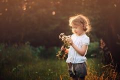 Muchacha linda del niño con las flores salvajes en campo de la puesta del sol del verano Imagen de archivo libre de regalías