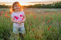 Muchacha linda del niño en campo de la amapola Fotografía de archivo