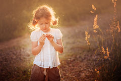 Muchacha linda del niño con la flor salvaje en campo de la puesta del sol del verano Fotos de archivo libres de regalías