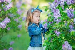 Muchacha linda en chaquetas azules con la falda airosa de hadas que se coloca cerca de arbusto de lila Imagen de archivo libre de regalías