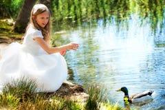 Muchacha linda en el vestido blanco que alimenta un pato. Imagenes de archivo