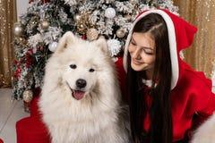Muchacha linda joven en el suéter de santa que se sienta en la tierra cerca del árbol de navidad y que abraza el perro blanco foto de archivo
