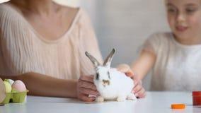 Muchacha linda que goza de su pequeño conejo adorable, frotando ligeramente y tomando el cuidado del animal doméstico almacen de video
