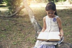 Muchacha linda que lee un libro en el parque Imagenes de archivo