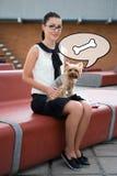 Muchacha linda que se sienta con el terrier de Yorkshire del perro Fotos de archivo