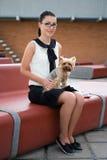 Muchacha linda que se sienta con el terrier de Yorkshire del perro en parque Foto de archivo
