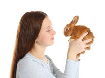 Muchacha linda que sostiene el pequeño conejo Imagen de archivo