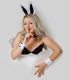 Muchacha - miradas juguetonas del conejo atractivo de un agujero Imagen de archivo
