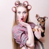 Muchacha modela joven rubia hermosa de los ojos azules de la mujer que se divierte que juega con el pequeño perro lindo que mira  Fotos de archivo