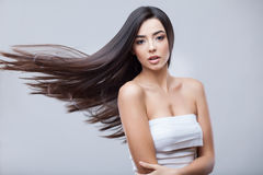 Muchacha morena hermosa con el pelo largo sano Foto de archivo