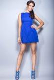 Muchacha morena hermosa en un vestido azul con maquillaje de la tarde y piel perfecta Cara de la belleza Imágenes de archivo libres de regalías