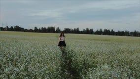 Muchacha morena joven bonita con un pelo ondulado en paseos negros de la falda en un campo de flor Visi?n trasera C?mara lenta metrajes