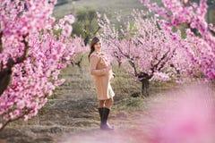 Muchacha morena vestida elegante hermosa linda con la mamá de la madre que se coloca en un campo del árbol de melocotón joven de  Fotos de archivo