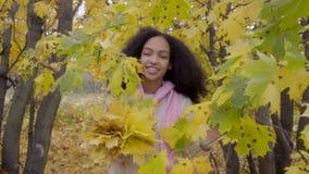 Muchacha negra hermosa que camina en bosque del otoño con el ramo amarillo del arce en su mano metrajes