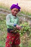 Muchacha nepalesa en Dolpo, Nepal Fotos de archivo libres de regalías