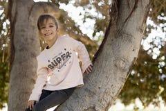 Muchacha para arriba en un árbol Fotos de archivo libres de regalías