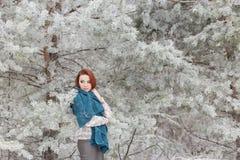 Muchacha pelirroja hermosa con una bufanda en sus hombros que camina en el bosque del invierno de los abetos y de los pinos calma Foto de archivo