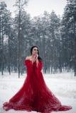 Muchacha pensativa en un vestido rojo en bosque nevoso Fotografía de archivo