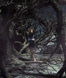 Muchacha perdida en el bosque frecuentado stock de ilustración