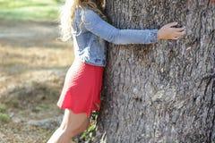 Muchacha que abraza el árbol Primer de las manos que abrazan el árbol Imágenes de archivo libres de regalías