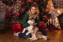 Muchacha que abraza el perro fornido cerca del árbol de navidad Fotos de archivo libres de regalías