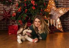 Muchacha que abraza el perro fornido cerca del árbol de navidad Foto de archivo