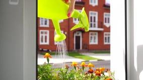 Muchacha que abre la ventana y que riega las flores almacen de metraje de vídeo