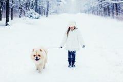 Muchacha que camina con el perro del perro chino de perro chino Fotografía de archivo