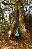 Muchacha que camina en el bosque Imagen de archivo