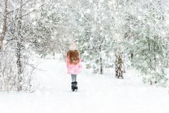 Muchacha que camina en el bosque del invierno, backview imagenes de archivo
